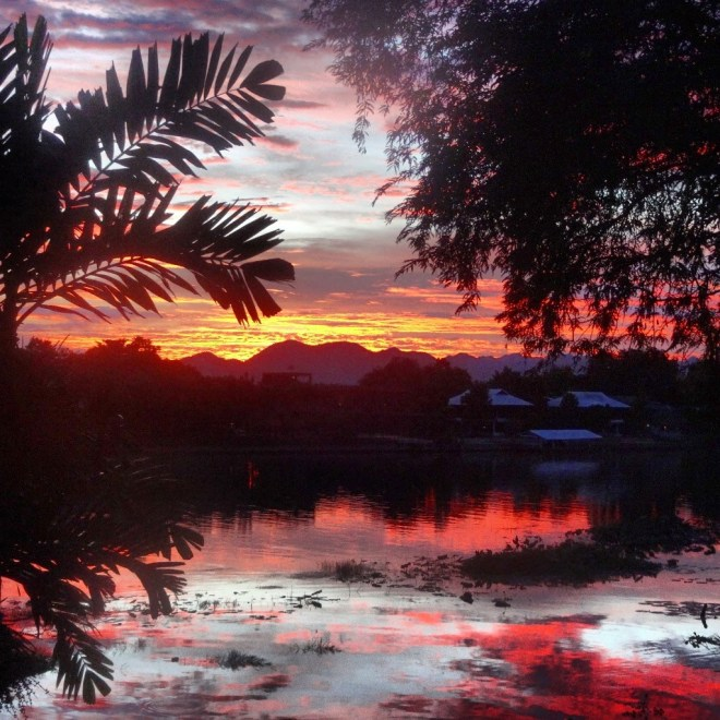 Sunset from the Jolly Frog garden