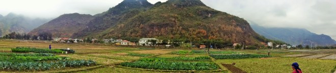 The fields of Mai Chau