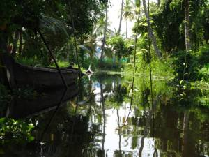 The canals of Alleppey