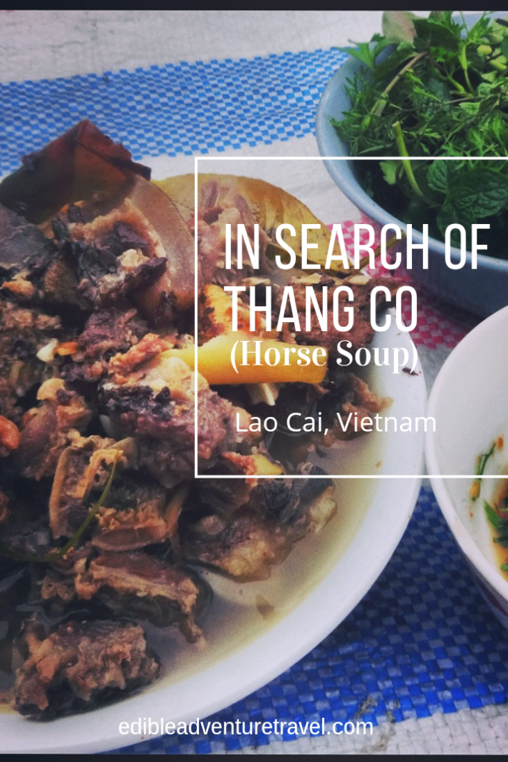 In Search of Thang Co. Horse Soup in the north of Vietnam