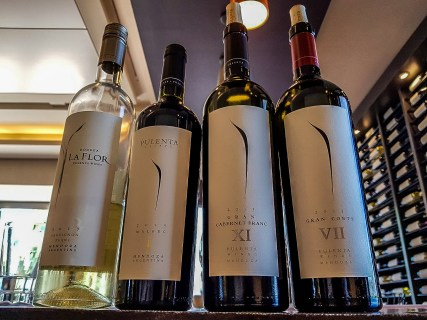 Mendoza Wine Tours
