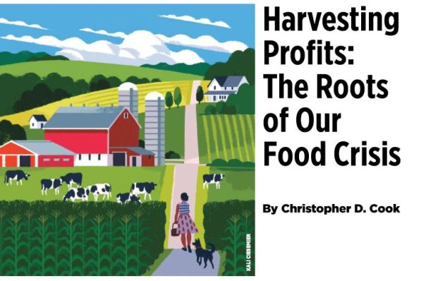 Harvesting Profits
