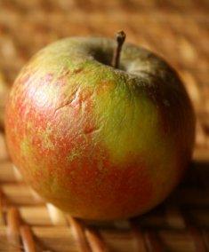 Tydemans late apple