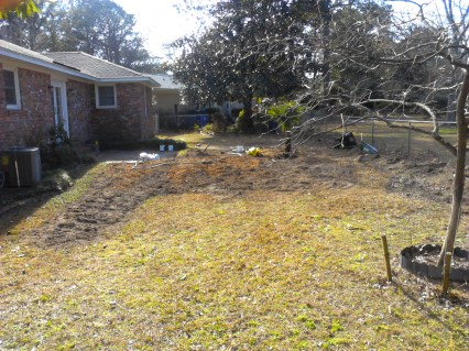 Before: Just starting operation Grass Removal.