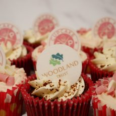 Woodland Trust Charity Cupcake Decoration