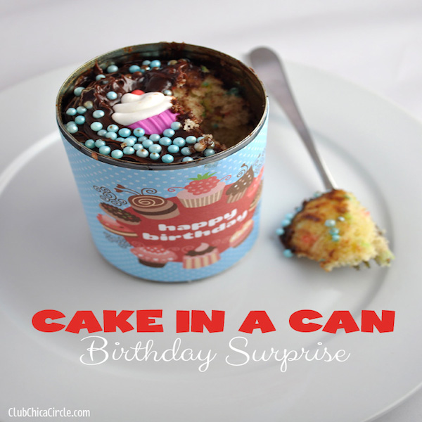 birthday-cupcake-in-a-can-DIY