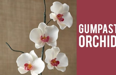 How To Make Edible Orchids For Your Cake