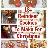 18+ DIY Christmas Reindeer Cookies
