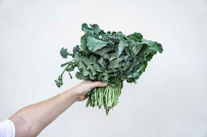 A bundle of kale.
