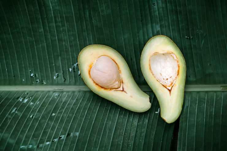 sliced avocado fruit on a banana leaf