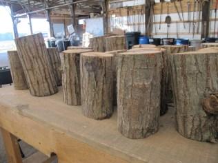 Oak logs to start