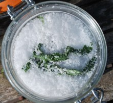 Crunched leaves will well flavour a jar of sea salt after a week. Photo: Mr. Edible.
