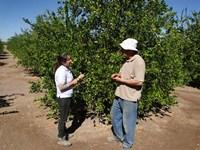 En La Huayca realizan taller para  postular a proyectos de innovación agraria
