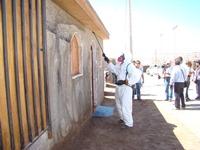 Inician control de plagas en la comuna de Alto Hospicio