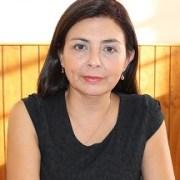 Seremi de Justicia destaca avances del proyecto de ley de Agenda Antidelincuencia
