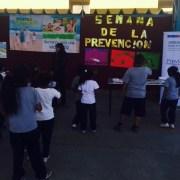 Habitantes de Pica participaron en Feria Preventiva de Senda
