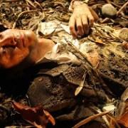 Serie de teatro y cuentos de la memoria: Extracto, El Maestro de Caleta Esperanza