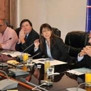 Constituyen comité por avances del Plan Especial de Desarrollo para Iquique