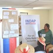 Agricultores de Colchane se preparan para fortalecer la quinua, alimento ancestral andino