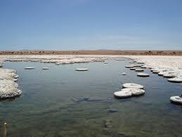 En plena crisis comunicacional SQM adquiere 50% de acciones de Minera Exar a Lithium ingresando al mercado del Litio en Argentina