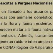 Reglamento inédito en Chile evitará el transporte de especies invasoras dentro del Parque Nacional Archipiélago Juan Fernández