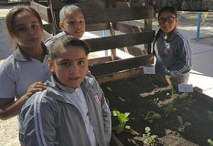 Programa de huertos escolares del FOSIS, promueve aprendizaje integral al aire libre