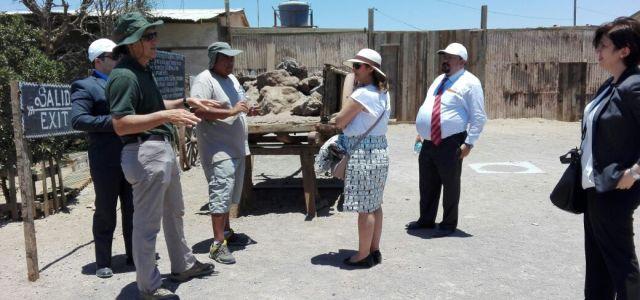 """Embajadora de Turquía en visita a Humberstone: """"Conocer las salitreras me facilitó conocer la historia de Chile"""""""