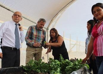 Sociedad de Mujeres Productoras de Hortalizas de Pisagua mostró invernadero a delegación de autoridades