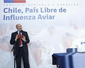 Chile Libre de Influenza Aviar, se establece en resolución oficial