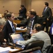 Senado aprobó el 10 de agosto como feriado Regional por festividad de San Lorenzo