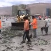 Municipio de Iquique refuerza tareas de limpieza en Cavancha, el principal balneario de la ciudad
