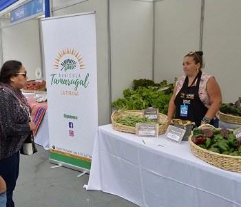 Productos naturales del Mercado Campesino cautivaron a visitantes en feria Gastronómica