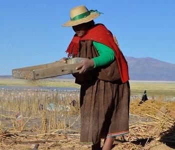 Comunidades de Colchane y Huara conocen proyecto sobre Sistemas Importantes del Patrimonio Agrícola Nacional