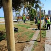 Finalmente y ante la porfía de los bañistas, Municipio de Iquique procedió al cierre de la PLaya Cavancha