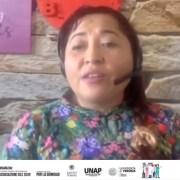 Especialista de Salud de Chile e Italia analizaron aprendizajes y desafíos frente a la pandemia