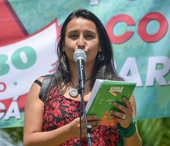 """Activista por la maternidad Javiera Molina y postnatal de emergencia: """"Para el gobierno, la infancia y las mujeres no son prioridad"""""""