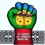 Profesionales, artistas y dirigentes sociales rechazan actos violentos contra comuneros mapuche perpetrados por civiles en La Araucanía