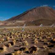Definen seis ejes clave para instaurar primer Laboratorio Natural para la Agricultura en el Desierto en la macrozona norte