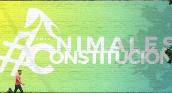 Más de 300 candidatos constituyentes se han adherido a la campaña #AnimalesEnLaConstitución