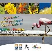 Inauguran exposición de Flora y Fauna Nativa en Colegio Bajo Molle para continuar con itinerancia en otros establecimientos