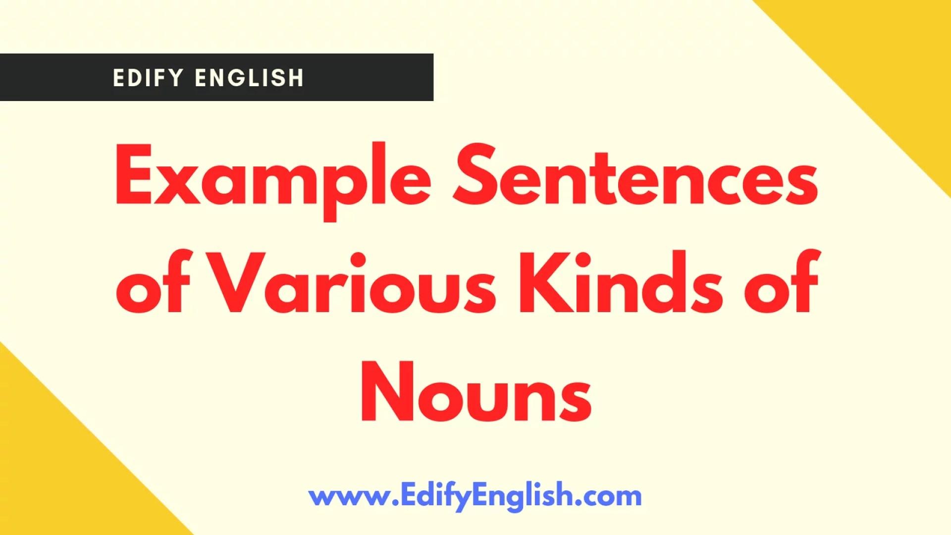 10 Examples of Noun Sentences Various Kinds