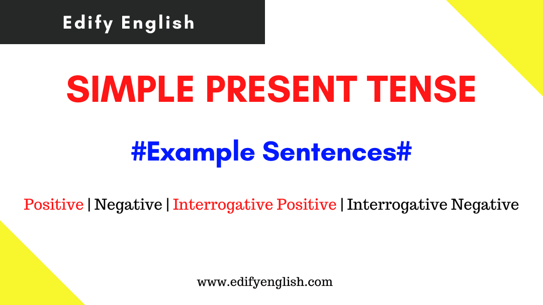 Simple Present Tense Examples