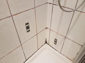 Shower Grout Before Restoration in Edinburgh