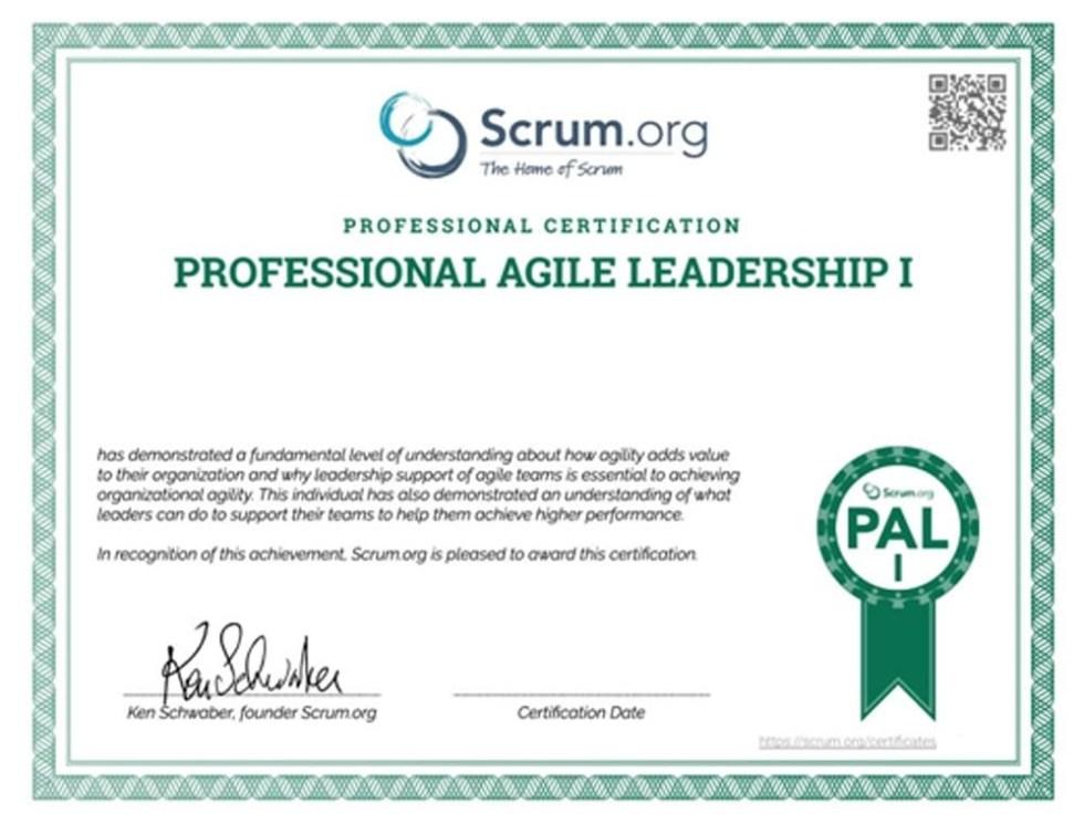 Professional Agile Leadership I Certificate