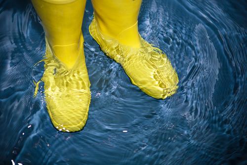 Flood prevention advice