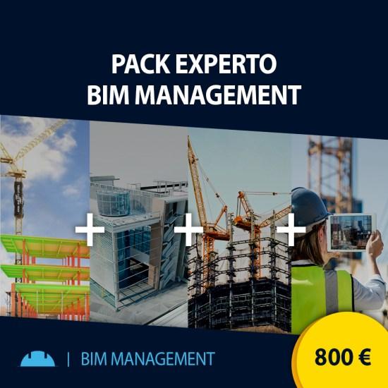Curso online pack Experto BIM Management