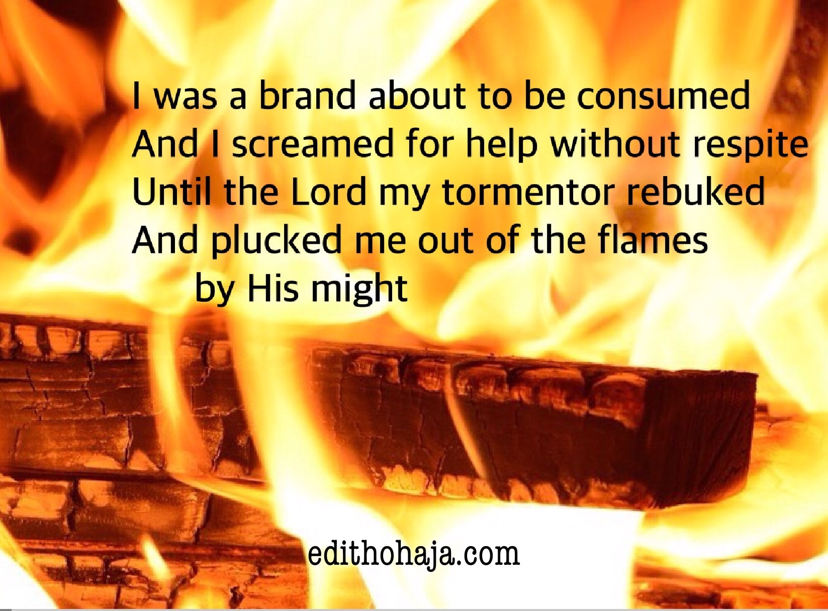 A BRAND SNATCHED FROM THE FIRE (POEM)