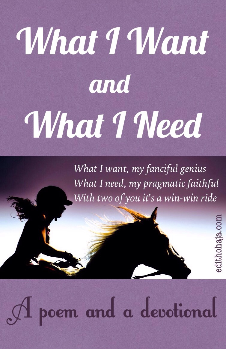 WHAT I WANT AND WHAT I NEED (POEM)