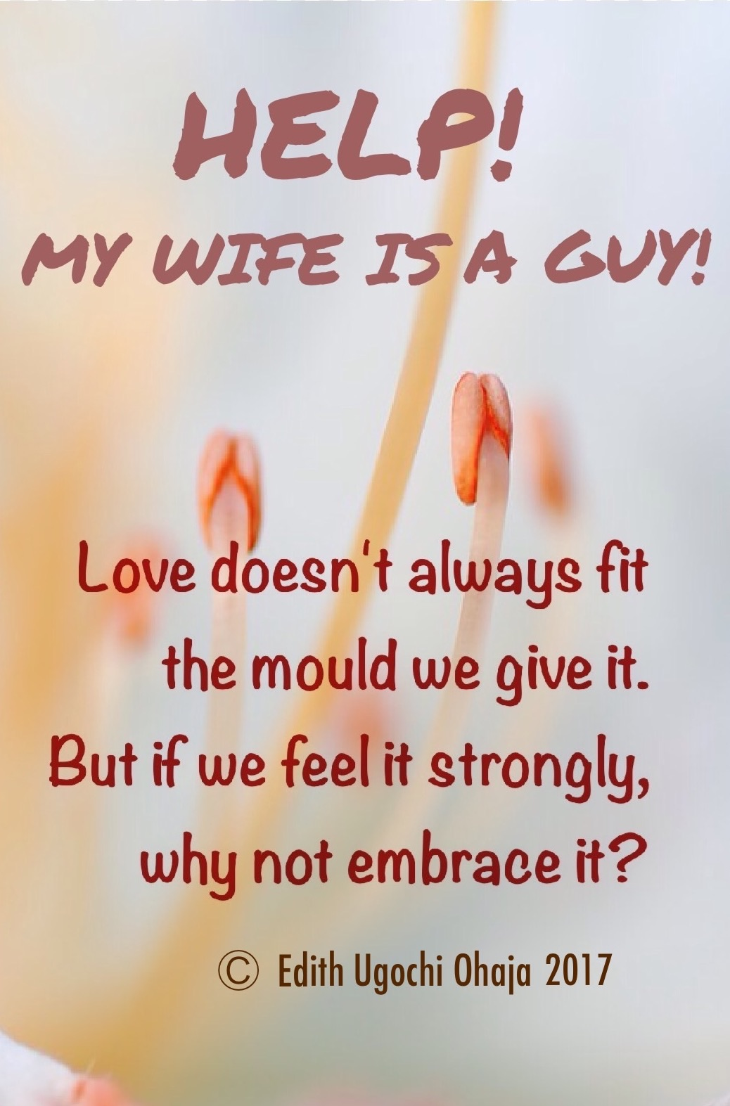 HELP! MY WIFE IS A GUY! (SHORT STORY)