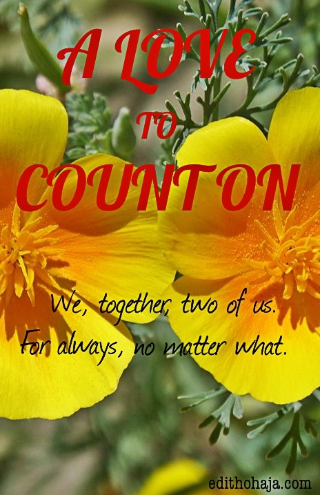 A LOVE TO COUNT ON (SHORT STORY)